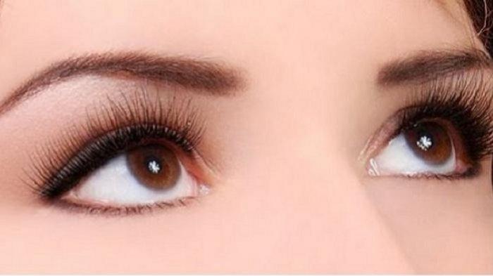 5 Tips Memanjangkan Bulu Mata dengan Bahan Alami, Jangan Lupa Gunakan Lidah Buaya