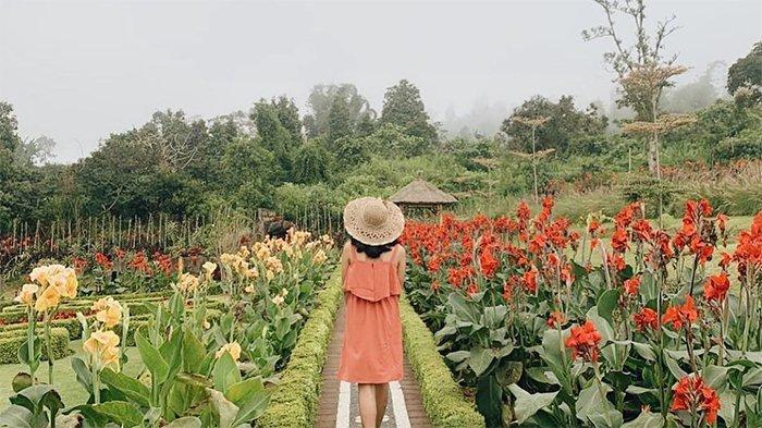 Bunga-bunga di The Blooms Garden