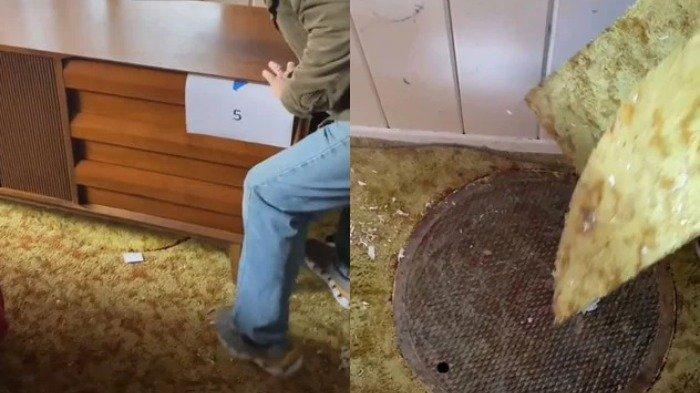 Viral, Wanita Ini Temukan Hal Mengejutkan yang Tersembunyi Selama 50 Tahun di Bawah Karpet Rumahnya