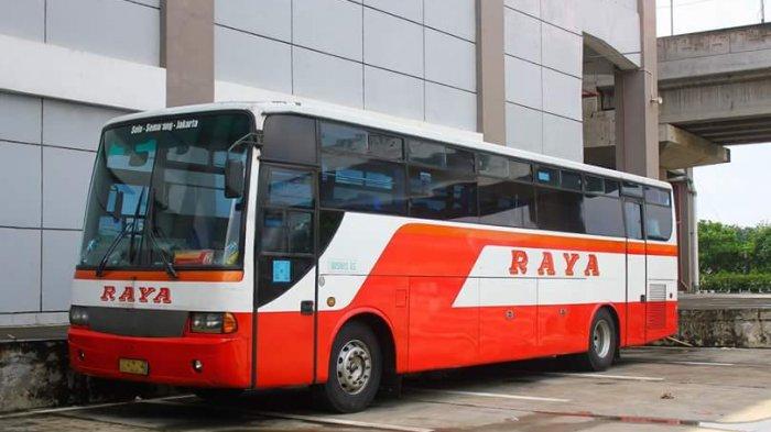 Pelanggan Setia Rela Antre dari Subuh untuk Dapatkan Tiket Mudik, Apa Istimewanya Bus Raya?