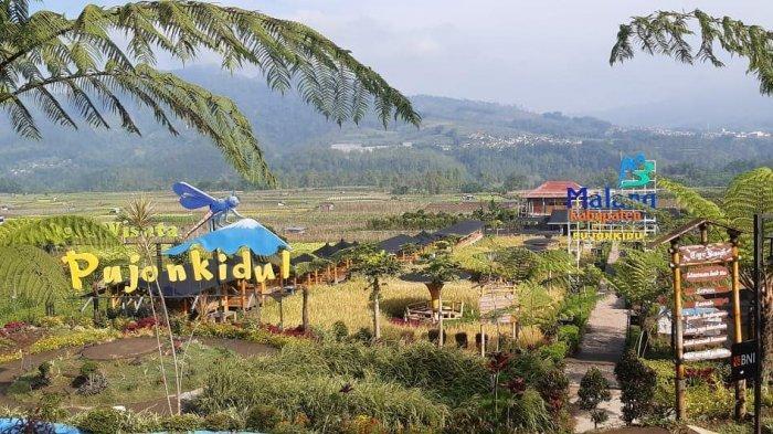 Harga Tiket Masuk dan Rute Cafe Sawah Pujon Kidul Terbaru 2021