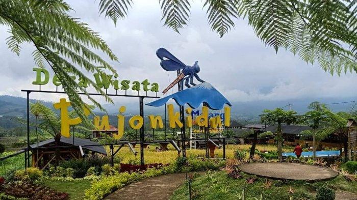 Jam Buka dan Harga Tiket Masuk Cafe Sawah Pujon Kidul Terbaru 2021