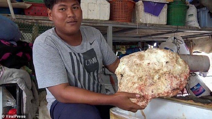 Nelayan Thailand Temukan Muntahan Ikan Paus Seberat 7 Kilogram, Ditaksir Harganya Capai Rp 4 Miliar