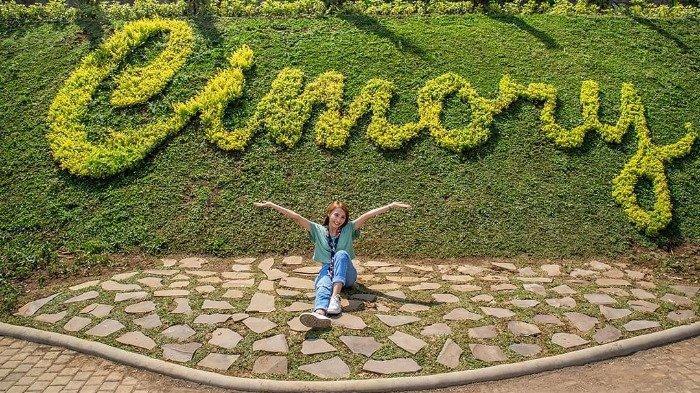 Tips Solo Traveling ke Cimory Dairyland Prigen, Perhatikan Harga Tiket Masuk Terbaru 2021