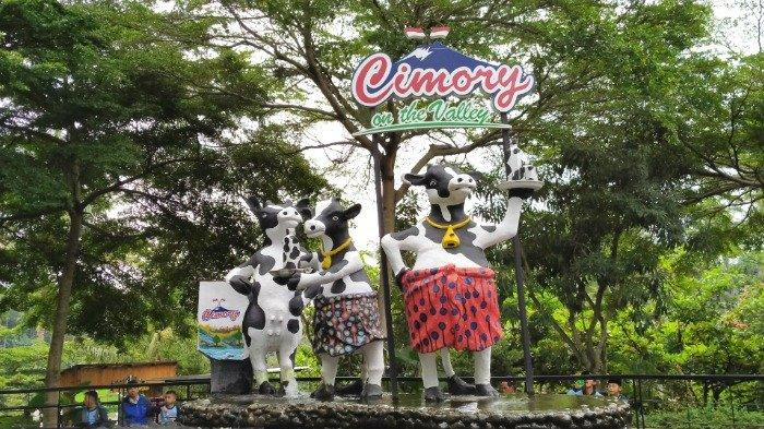 Patung sapi di Cimory On The Valley Semarang yang instagramable, Rabu (26/2/2020).