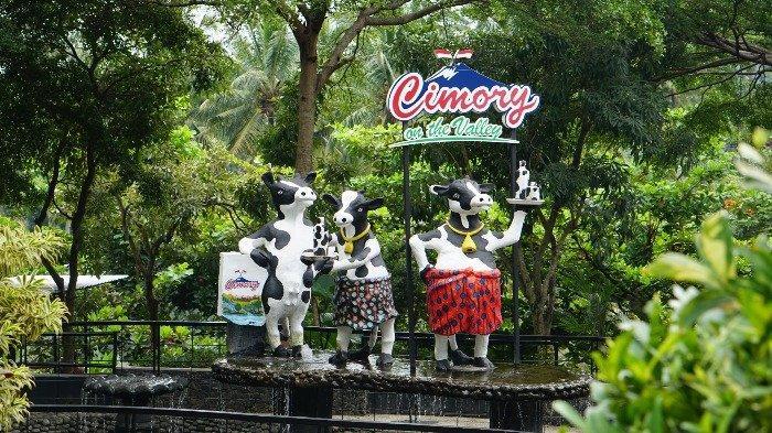 Panduan Wisata Cimory On The Valley Semarang, Jelajahi Konter Cokelat hingga Spot Foto Instagramable