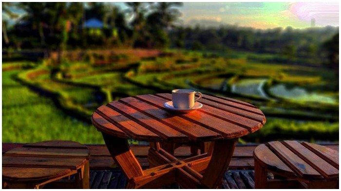 TRAVEL UPDATE: Seruput Kopi di Praja Coffee Loyok, Tempat Ngopi di Lombok dengan Nuansa Pedesaan