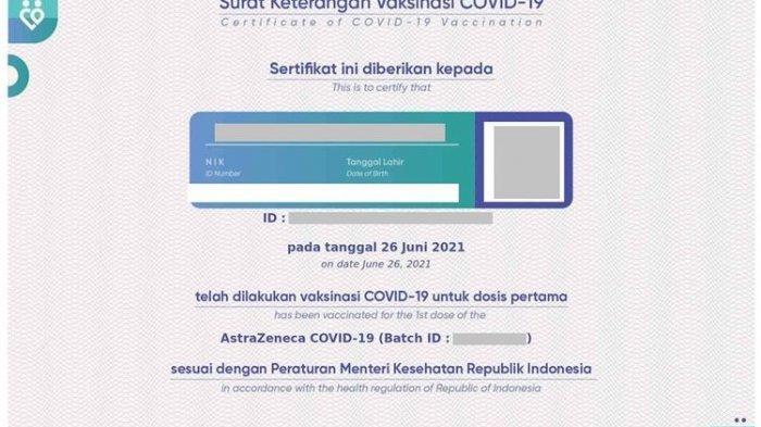 Contoh sertifikat vaksin Covid-19. Berikut cara cetak sertifikat vaksin Covid online atau cara cetak sertifikat vaksin di Pedulilindungi.