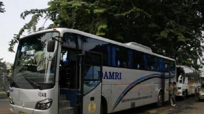 Layani Angkutan dari dan ke Bandara YIA, Damri Berikan Tarif Promo Rp 25 Ribu