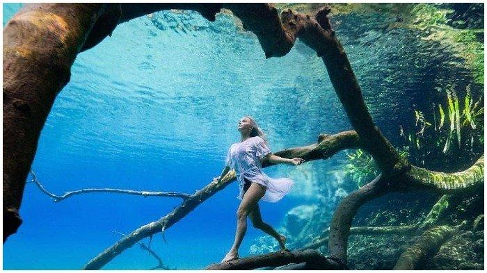 Potret Labuan Cermin, Danau di Kalimantan Timur yang Cantik Memesona