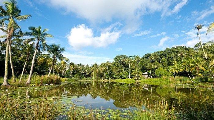 Pulau Ubin, Surga Tersembunyi di Singapura yang Tawarkan Keindahan Alam dan Ketenangan