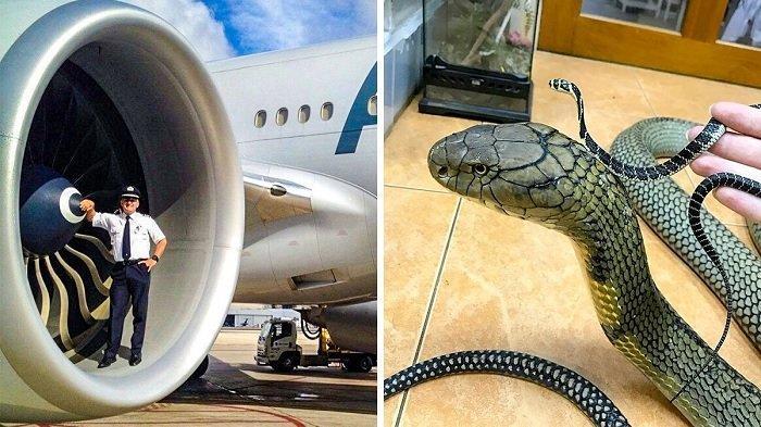 8 Foto Kejadian Langka yang Tak Banyak Orang Tahu, Lihat Ukuran Mesin Boeing 787 dengan Manusia