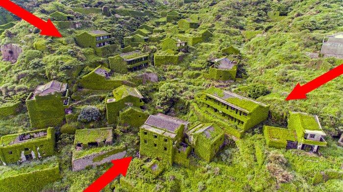 Hampir Seluruh Rumah di Desa Kecil di China Ini Tertutupi Tanaman Hijau, Penyebabnya Bikin Geram
