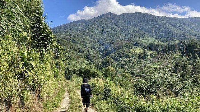 7 Tempat Trekking Seru untuk Wisata Gunung di Bogor, Desa Pasir Jaya Jadi Favorit Wisatawan