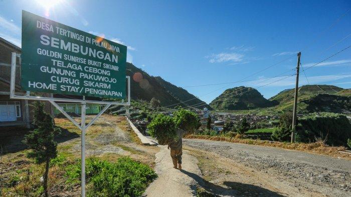Wisata Dieng Tutup Total Selama PPKM Darurat, Homestay Sepi dan Banyak Wisatawan Batalkan Perjalanan