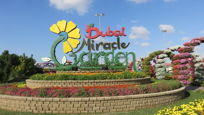Dubai Miracle Garden - 'Padang Pasir' Berbunga yang Wajib Kamu Singgahi Selain Burj Khalifa