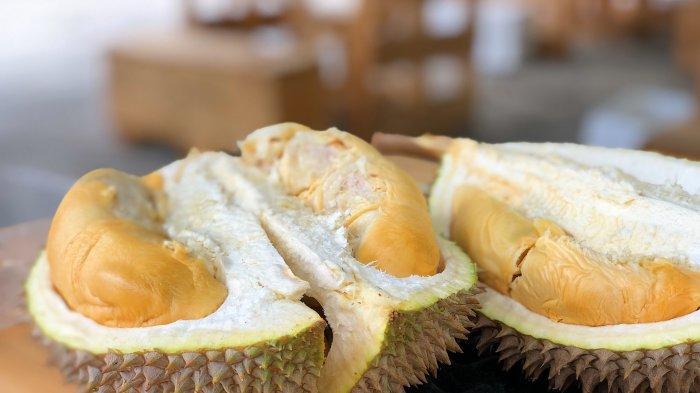 TRAVEL UPDATE: Serunya Berburu Durian Sembari Bersantai di Pusuk Pas Lombok
