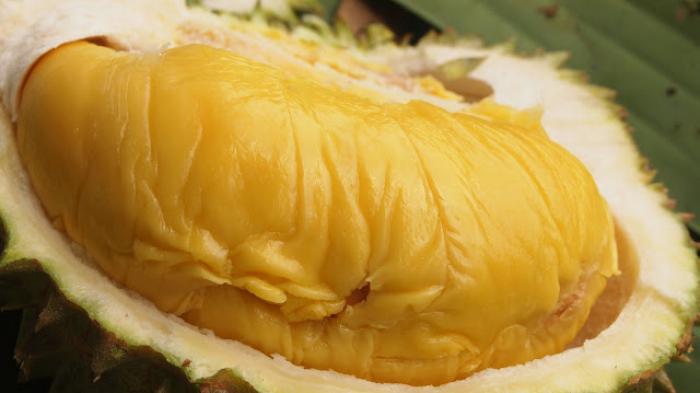 Mengenal Durian Musang King, Varian Durian Terbaik di Dunia dengan Daging Legitnya