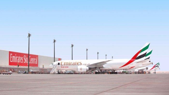Emirates Tawarkan Promo Tiket Pesawat, Ada Diskon 10 Persen Khusus untuk Pelajar