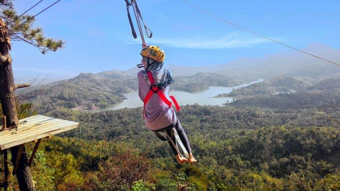 Coba Wahana Flying Fox Terpanjang Nomor 2 di Asia Tenggara yang Ada di Gunungkidul, Segini Tarifnya