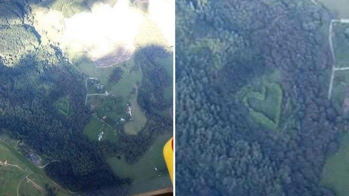 Awak Helikopter Temukan Hutan Kecil Berbentuk 'Love', Ternyata Ada Kisah Romantis di Baliknya