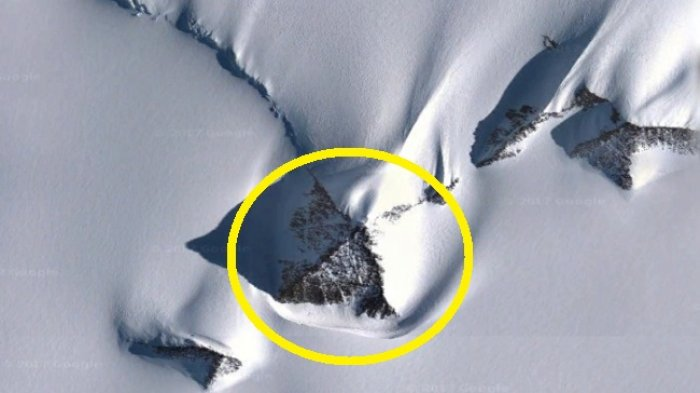 5 Fakta Unik Antartika, Termasuk Keberadaan Serangga Aneh hingga Danau Subglacial