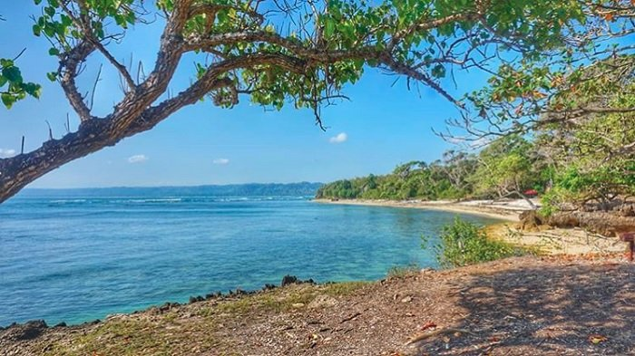 Daftar 7 Pantai Terindah di Jawa Timur: Intip Eksotisnya G-Land Pantai Plengkung Banyuwangi
