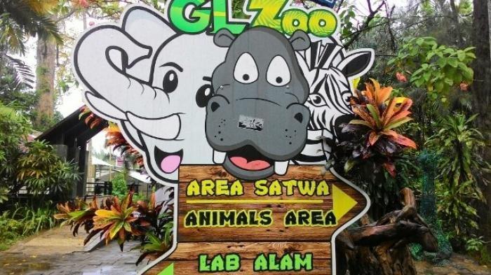 Kebun Binatang Yogyakarta 2019