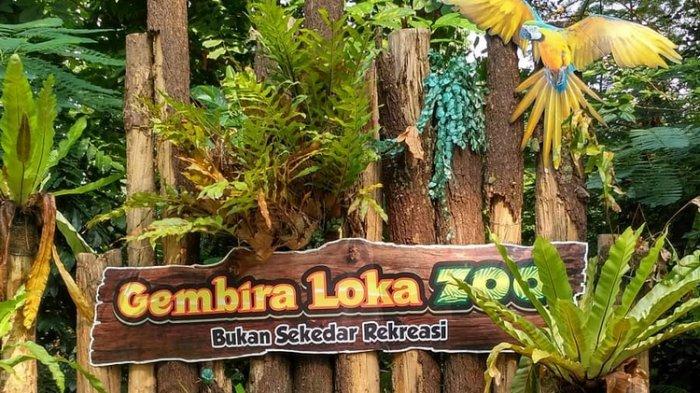 Harga Tiket Masuk Kebun Binatang Gembira Loka Terbaru, Kini Buka saat Weekend