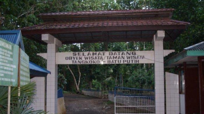 Jelajah Cagar Alam Tangkoko, Surga Satwa Endemik di Sulawesi Utara