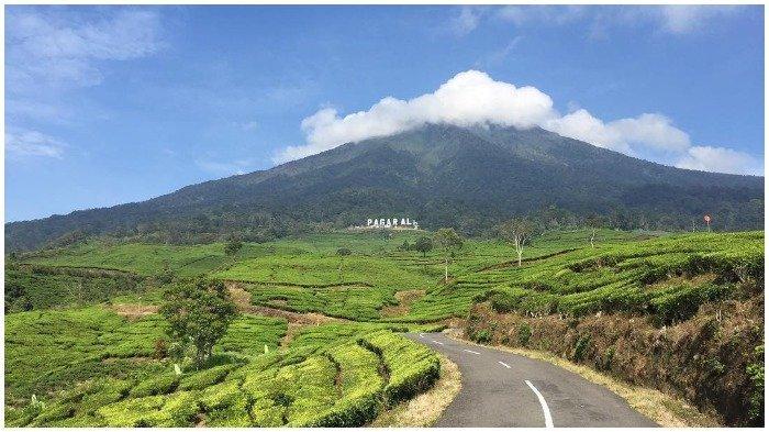 Tak Ingin Diblacklist, Patuhi Syarat dan Aturan Mendaki Gunung Dempo Ini -  Tribun Travel