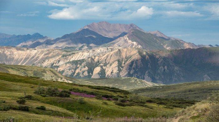 Alaska Tawarkan Vaksin Covid-19 Gratis untuk Wisatawan Pada 1 Juni Mendatang