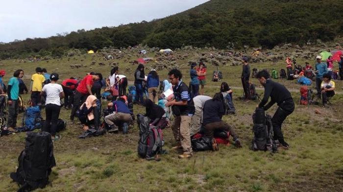 Para pendaki di Lembah Surya Kencana, Gunung Gede, Jawa Barat, Minggu (13/11/2016).