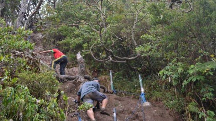 Sempat Dibuka, Jalur Pendakian Gunung Gede Pangrango Ditutup Lagi