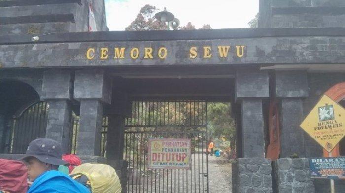Pencarian Alvi Pendaki Asal Magelang Hilang di Gunung Lawu, Azan Dikumandangkan Sebelum Penyisiran