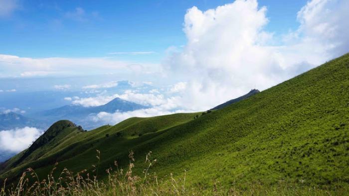 Sabana di jalur pendakian Gunung Merbabu via Suwanting