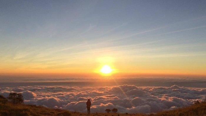 Surga Para Pecinta Edelweis, Ini 6 Potret Keindahan Gunung Merbabu