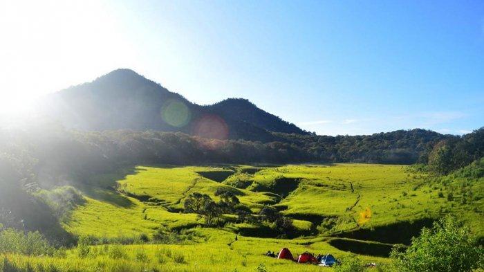 6 Gunung dengan Sabana Terindah di Indonesia, Bisa Didaki Saat Perayaan 17 Agustus Nanti