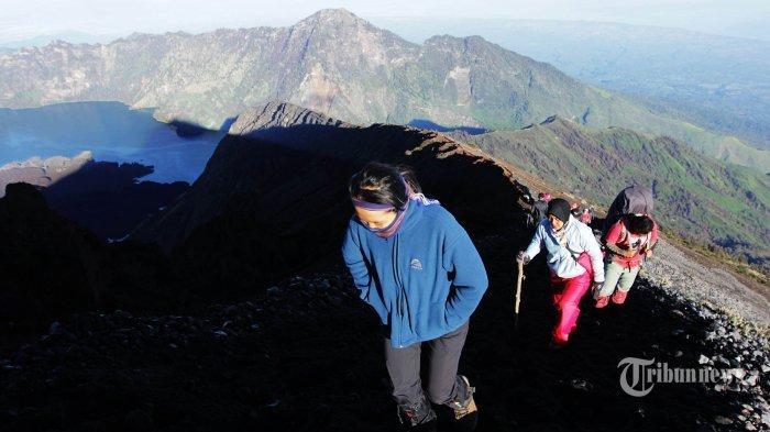 Agar Selamat Sampai Puncak, Ini Tips Mendaki Gunung Bagi Pemula yang Wajib Diketahui