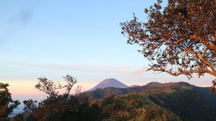 Awal Tahun 2019, Kegiatan Pendakian di Gunung Semeru Ditutup untuk Pemulihan Ekosistem
