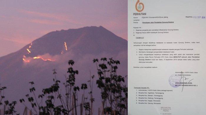 Akibat Kebakaran Hutan, 3 Gunung di Jawa Tengah Tutup Jalur Pendakian untuk Sementara