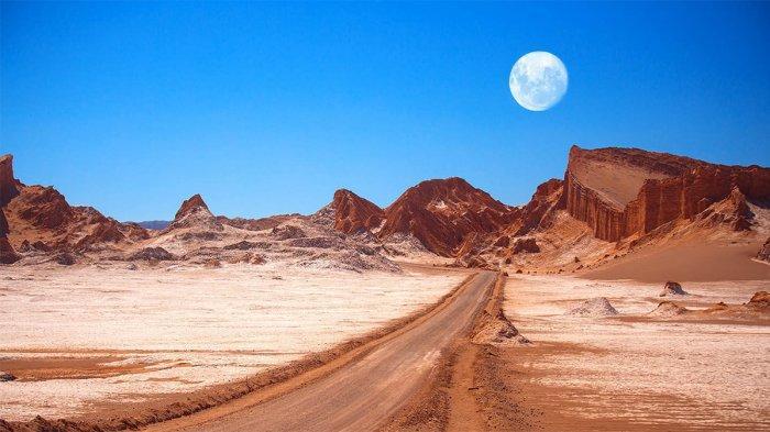 Dikenal Sebagai yang Terkering di Dunia, Gurun Atacama Pernah Jadi Oasis Subur Akibat Kotoran Burung