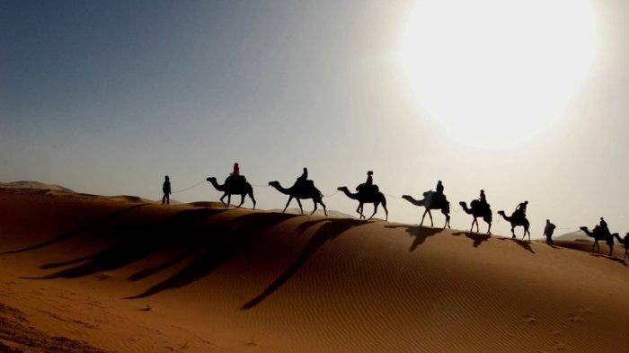 Gurun Sahara, padang pasir terpanas di dunia.