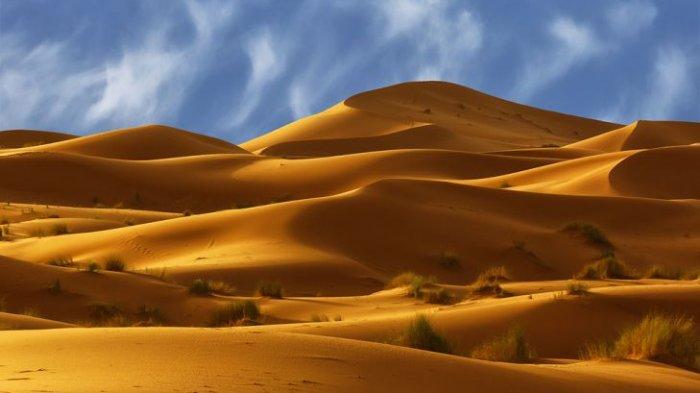 Gurun Sahara