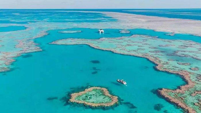 Indahnya Heart Reef, Susunan Karang Berbentuk Hati di Australia yang Kini Bisa Dikunjungi