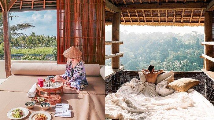 10 Penginapan Murah di Ubud Bali dengan Harga Rp 100 Ribuan Per Malam, Dapat Fasilitas Kolam Renang