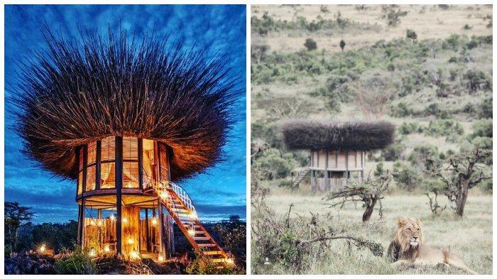 The Nay Palad, Hotel Mewah dengan Konsep Rumah Burung di Alam Liar Kenya