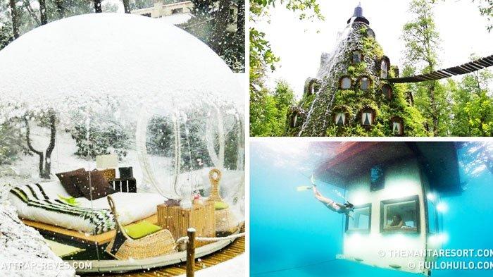 10 Penginapan Impian Para Traveler Hotel Bawah Laut Hingga Rumah Pohon Lekat Dengan Nuansa Alam Tribun Travel