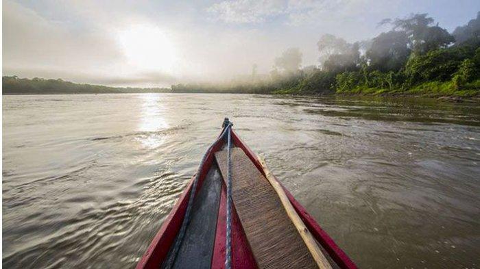 6 Fakta Unik Hutan Amazon, Asal Muasal Sungainya Masih Jadi Misteri