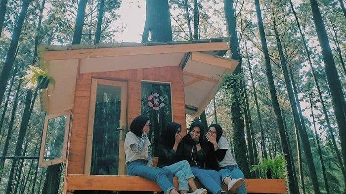 5 Wisata Gunung di Bogor yang Wajib Dikunjungi, Ada Gunung Pancar dengan Spot Foto Instagramable